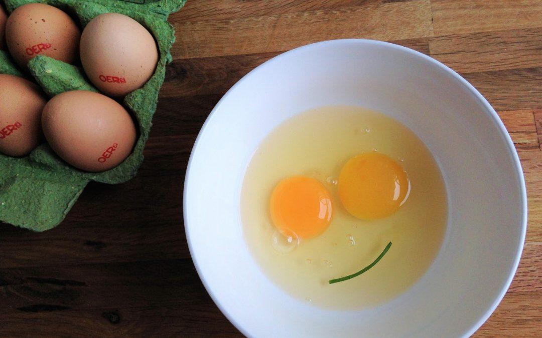 Het ei: de beste vleesvervanger